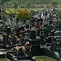 お墓と費用